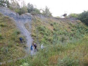 Doulton's Clay Pit,  Saltwells Local Nature Reserve