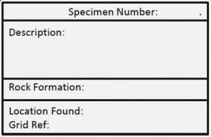 specimen_labels