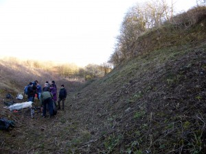 Beacon Hill Quarry after clearance. Photo by Andy Harrison.