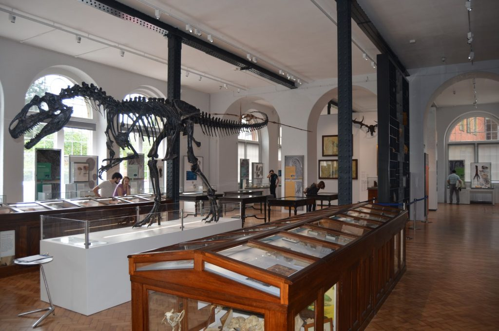 The Museum's main hall – Evolution of Life Gallery