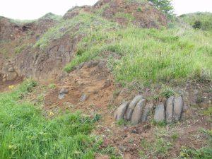 Portway Hill Quarry Dolerite Columns