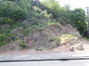 Rubery Cutting before clearance