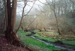2004-05-15_029.jpg