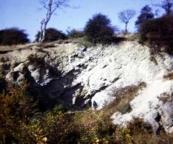 Wrens Nest South.jpg