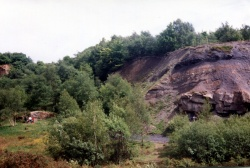 Doultons Claypit 3.jpg