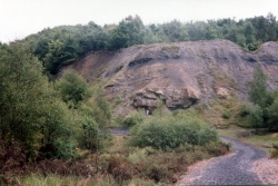 Doultons Claypit 9.jpg