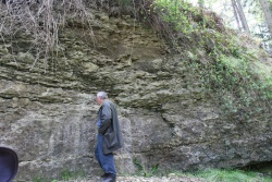 Exposure-of-the-Lower-Elton-Formation-overlying-the-Much-Wenlock-Limestone-Location-2-1.jpg