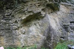 Draped-Wenlock-Limestone-and-Bioherm_Hobbs-Quarry-1.jpg