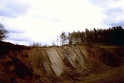 1984-BCGS-Fieldtrip-ForestofDean-5editCandC.jpg