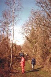 1984-BCGS-Fieldtrip-ForestofDean-9CandC.jpg