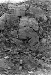 1978-BCGS-April16-NewhurstQuarry-6.jpg